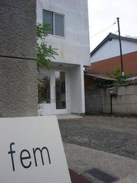 fem1.jpg